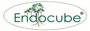 endocube-300x105 (1)